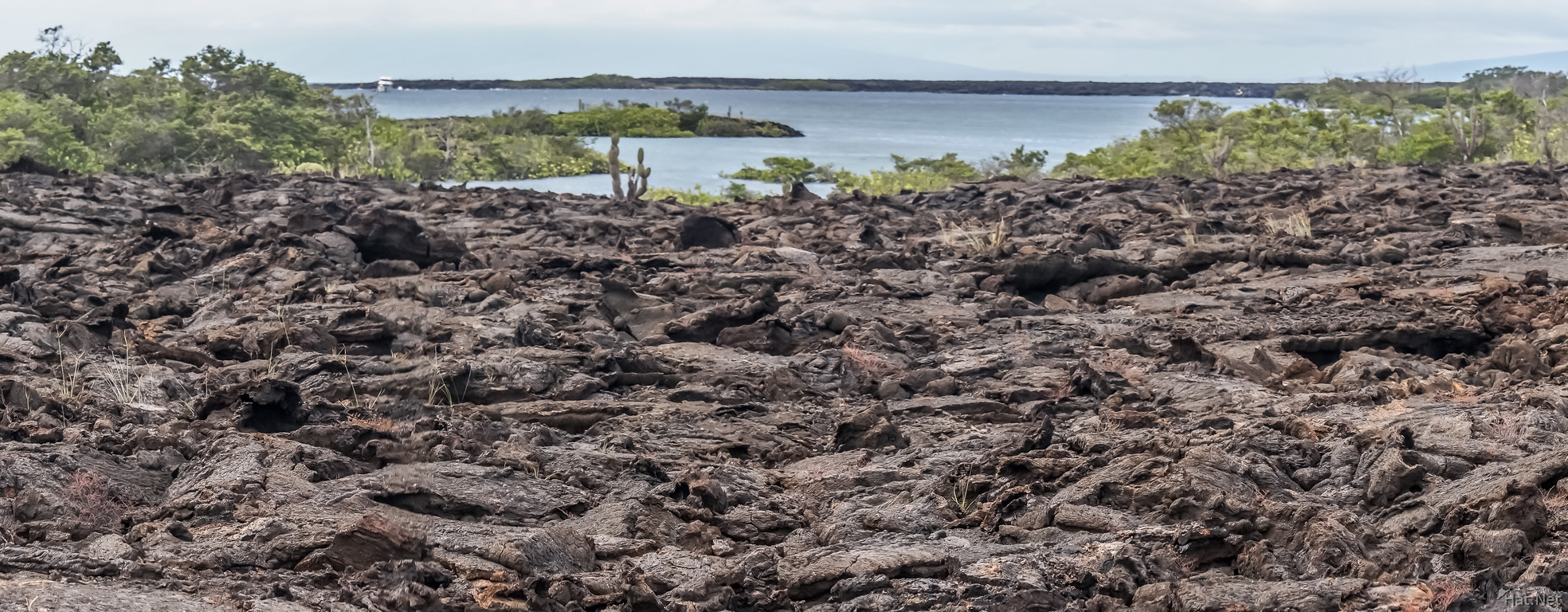 Lava field of Punta Moreno