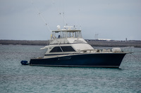 Altamar cruise ship to North Seymour Day Tour Puerto Ayora, Galapagos, Ecuador, South America