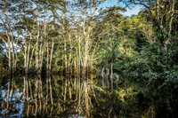 20140417172653-Cuyabeno_River_Tour