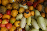 20140504095903-Fruits_of_Canar_Market